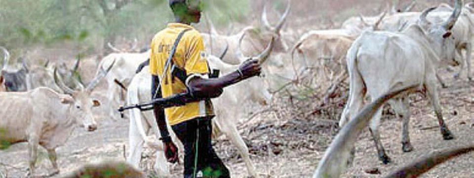 ImageFile: Herdsmen and our collective helplessness